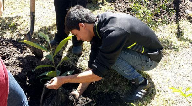 Personal del parque Metropolitano enseñó a los asistentes cómo sembrar los árboles y arbustos. Foto: Ana María Carvajal/ EL COMERCIO / Cortesía: El Comercio