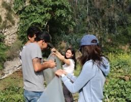 Proyecto en Guapulo