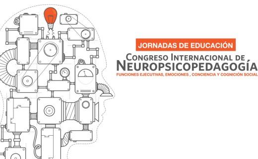 Curso de neuropsicopedagogía